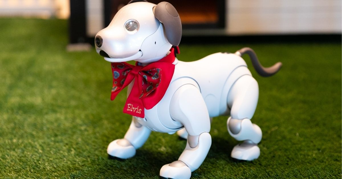 resorts-world-las-vegas-robotic-dogs