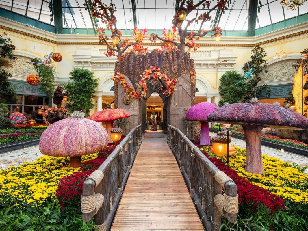 bellagio-conservatory-bontanical-garden-fall-2021